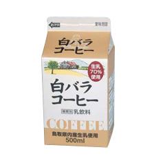 白バラコーヒー。