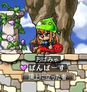 Maple091228_040302.jpg