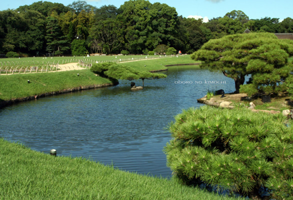 2009 8月13日 小豆島 岡山 346のコピー