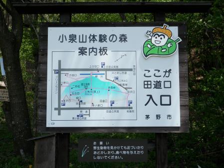 小泉山110514 (3)60