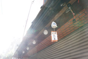 arkicyo_fukei.jpg
