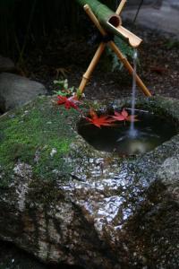 紅葉の手水鉢