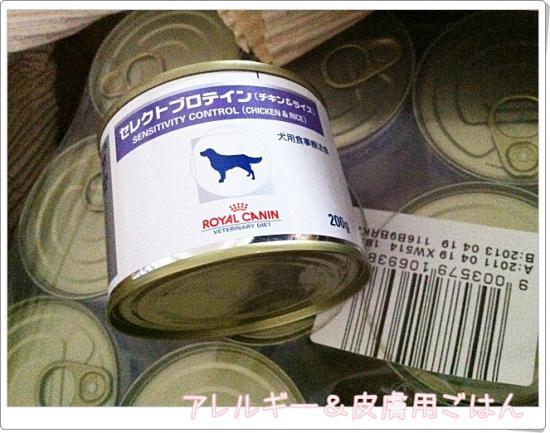013_20111021131202.jpg