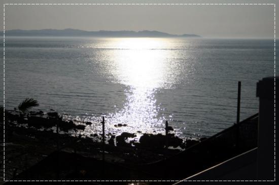20110716_9999_470.jpg