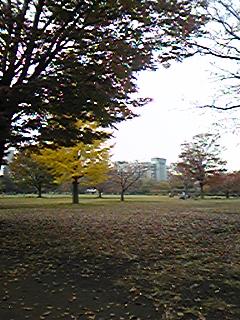 20091127113617