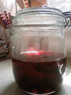 2010.08.28ブラックベリー酒