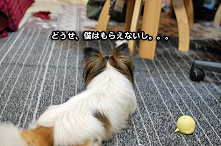 たこ焼きデー-02
