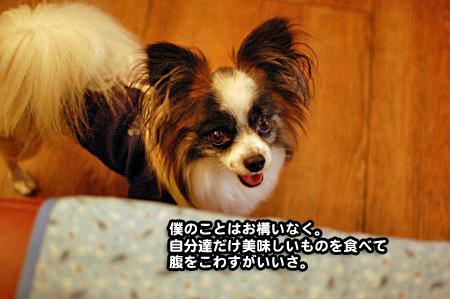 うしすけ鷺沼店-13