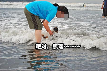 海の男-10
