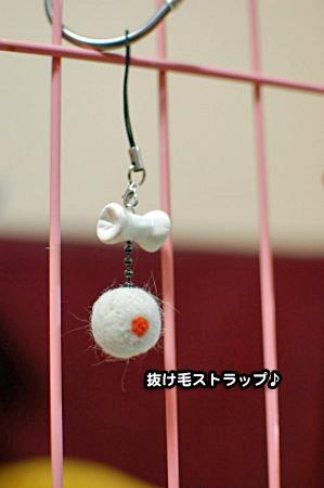 抜け毛ストラップ-01