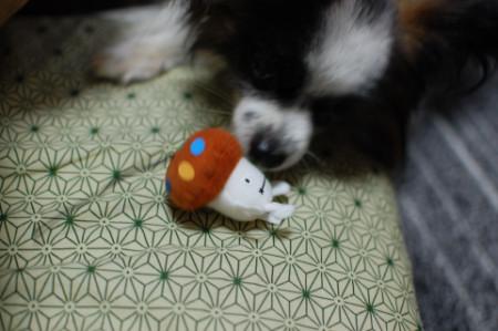 新ケータイとドコモダケ-09