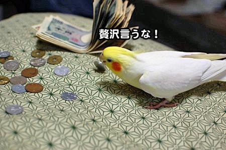 大蔵省-04