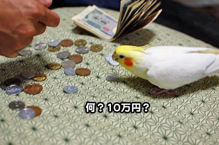 大蔵省-02