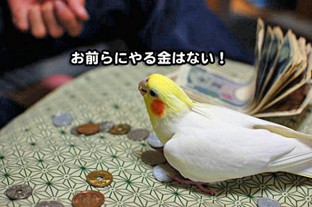 大蔵省-09