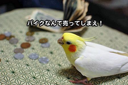 大蔵省-07