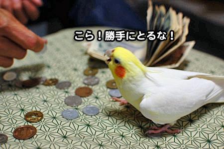 大蔵省-08