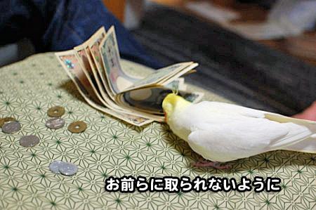 大蔵省-12