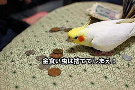 大蔵省-11