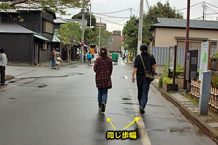 谷中猫町其の一-01