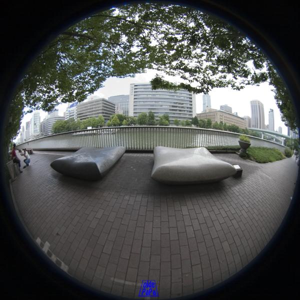 m091029_01.jpg