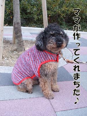 2011_01140010.jpg