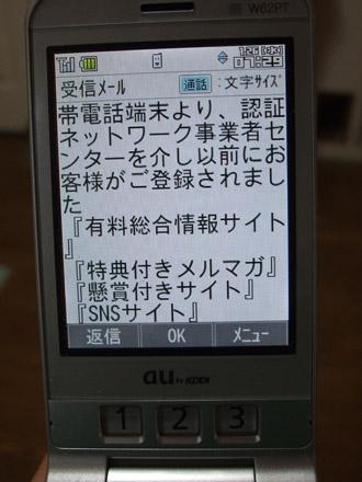 2011_01250008_20110206154606.jpg