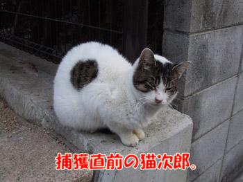 2011_02010001.jpg