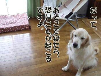 2011_02010010.jpg