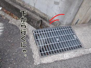 2011_02070039.jpg