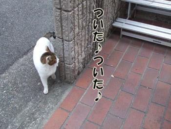 2011_02070054.jpg