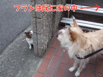 2011_02070056.jpg