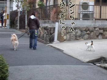2011_02070060.jpg