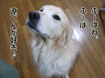 2011_02070063.jpg