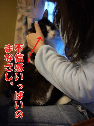 2011_02210018.jpg
