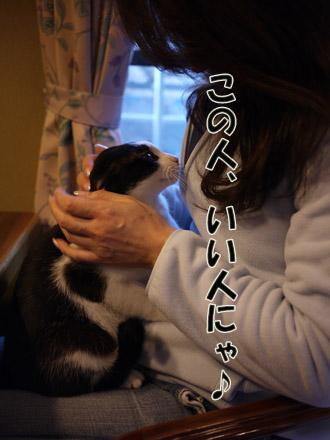 2011_02210025.jpg
