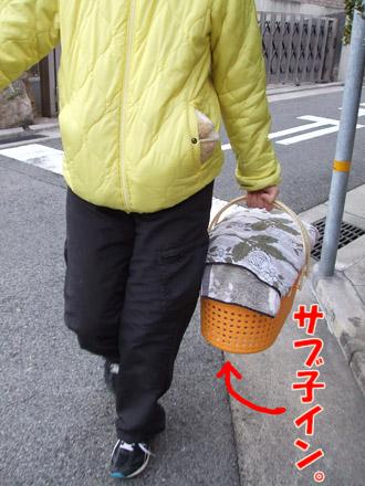 2011_03070061.jpg