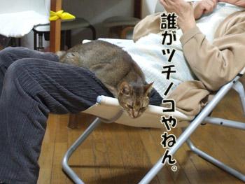 2011_03070068.jpg