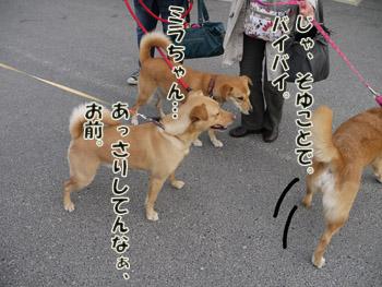2011_03120126.jpg