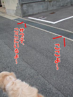2011_04060027.jpg