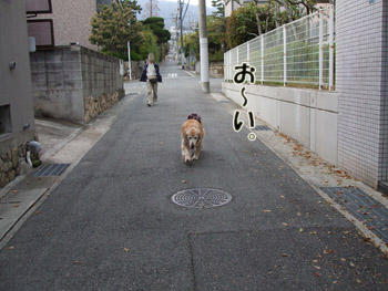 2011_04110046.jpg