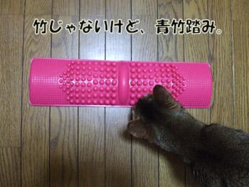 2011_04110055.jpg