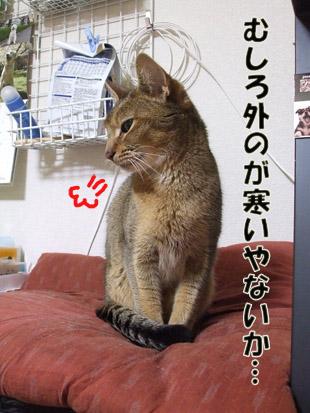 2011_04190012.jpg