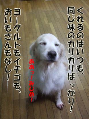 2011_04260031.jpg