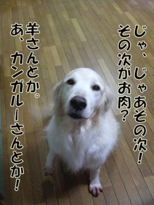 2011_04260046.jpg
