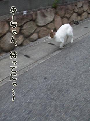 2011_05210014.jpg