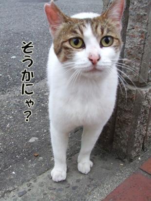 2011_05210026.jpg