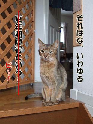 2011_05280037.jpg