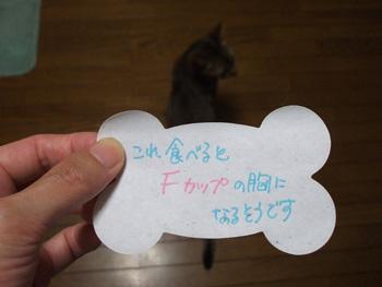 2011_06250048.jpg