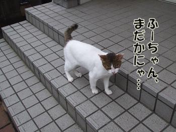 2011_07100025.jpg