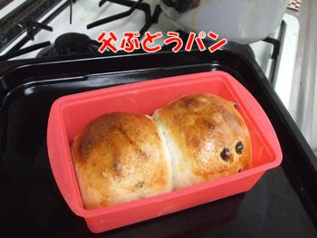 2011_07190012.jpg